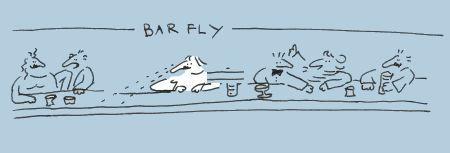 barfly4.jpg