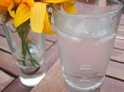 gin-2.jpg